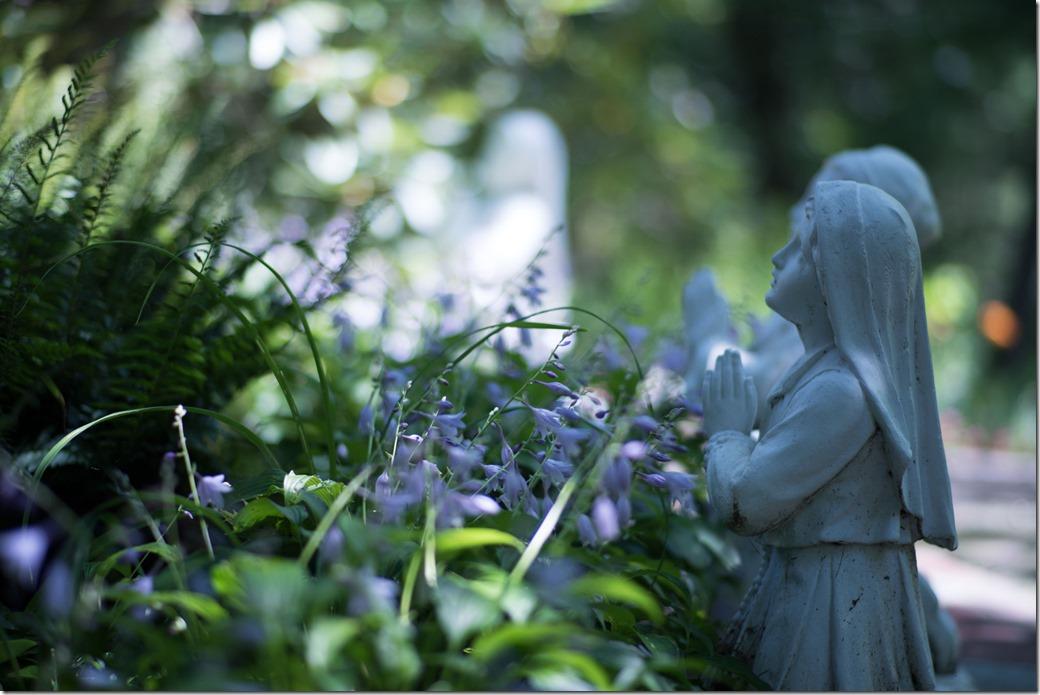 Praying-in-the-shade