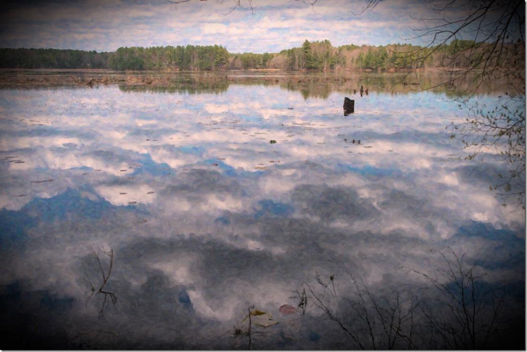 Lake Oil_DSC6923