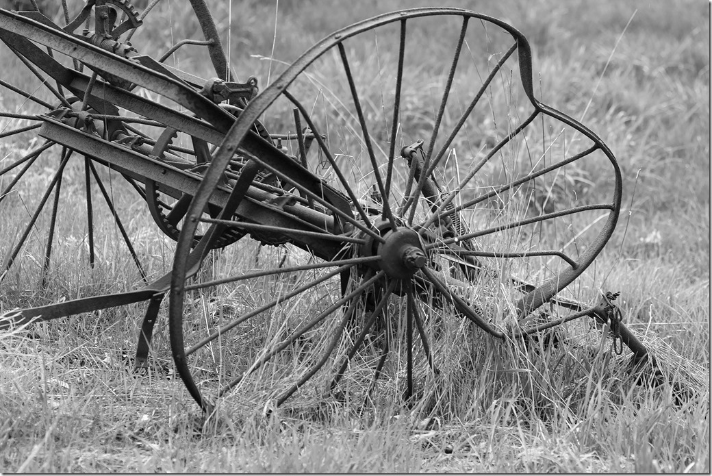 Old Wheel_SDI2769