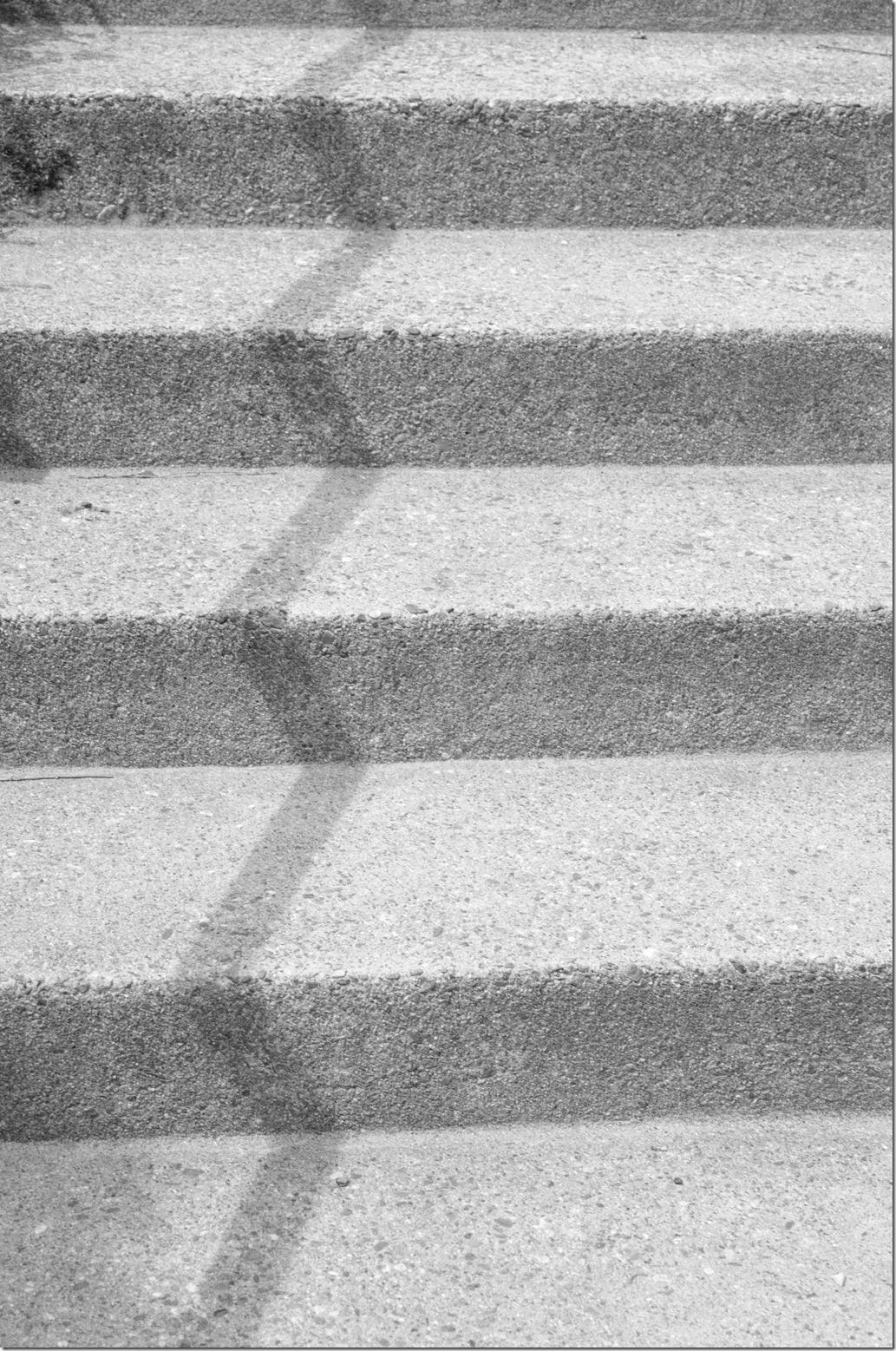 Steps L1002739