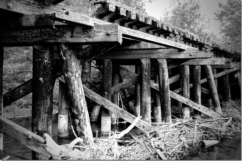 Distressed bridge_DSC8542 - Copy-1