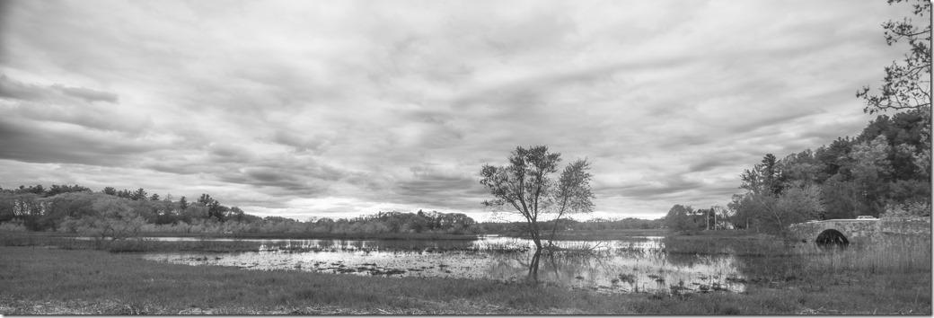 Landscape wide viewDSC_0975-1