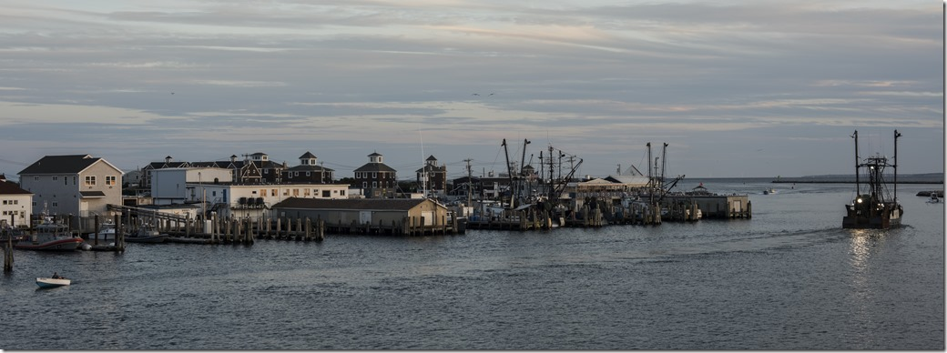 Harbor DSC_1820-1