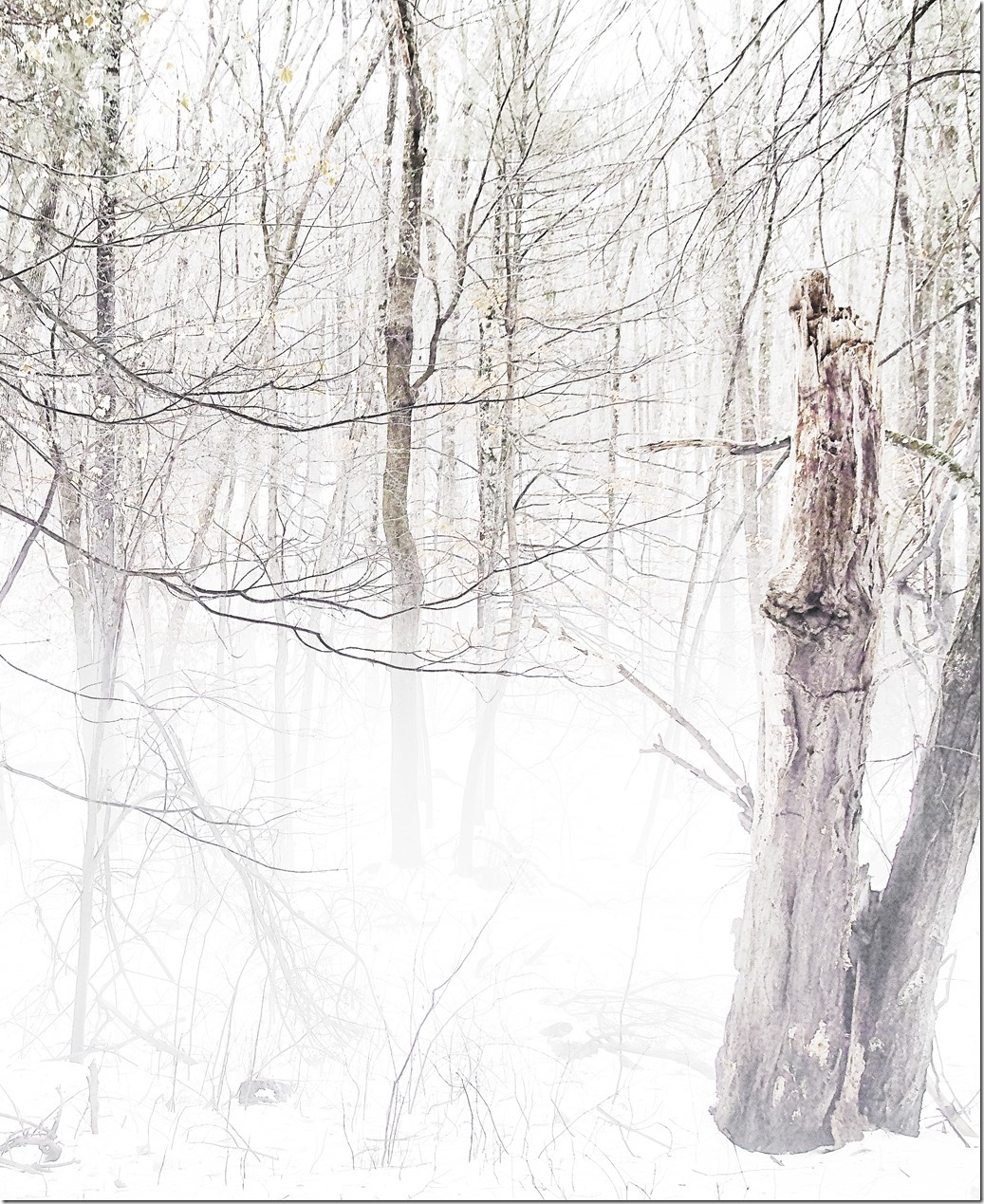 Snow Scene SDQH0052_thumb[1]