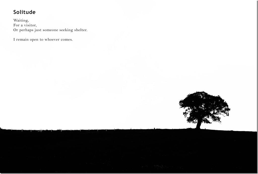 Solitude IMGP3106-1