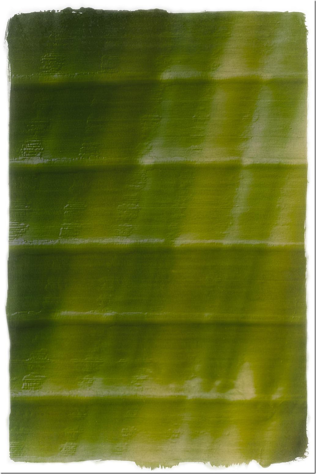 Green Leaf MOD SDQH0029