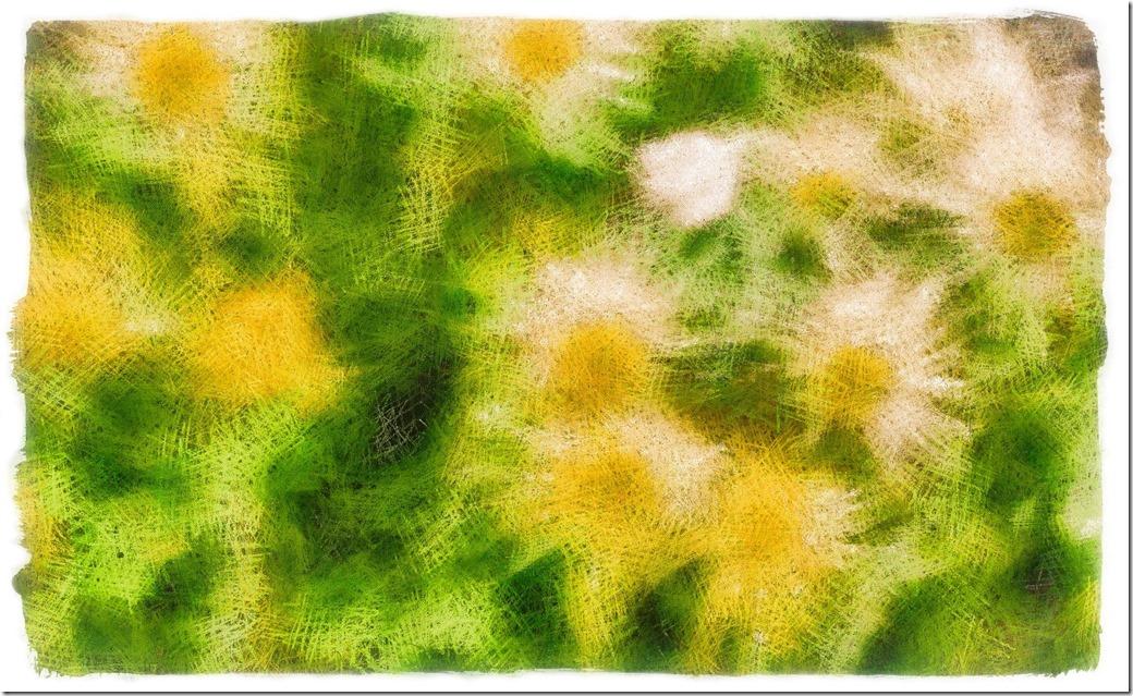 Angelic Flowers