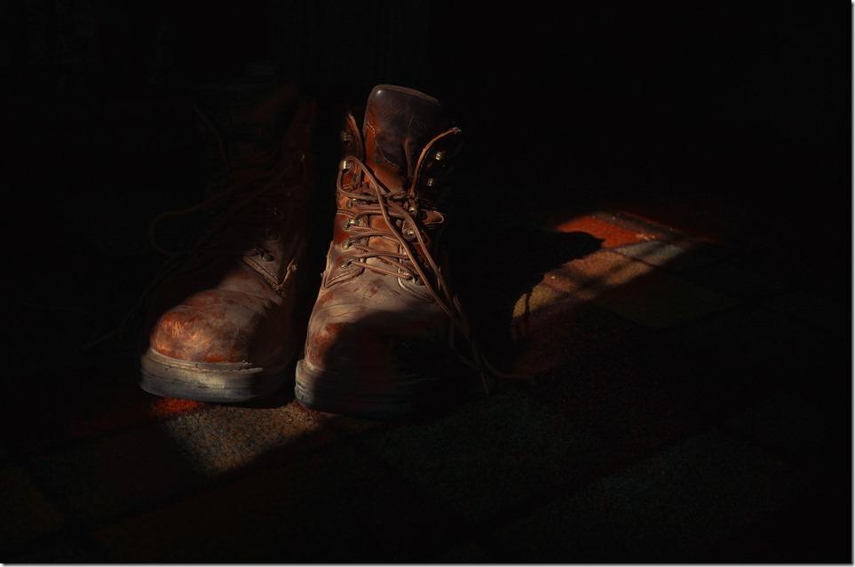 Boots L9470151
