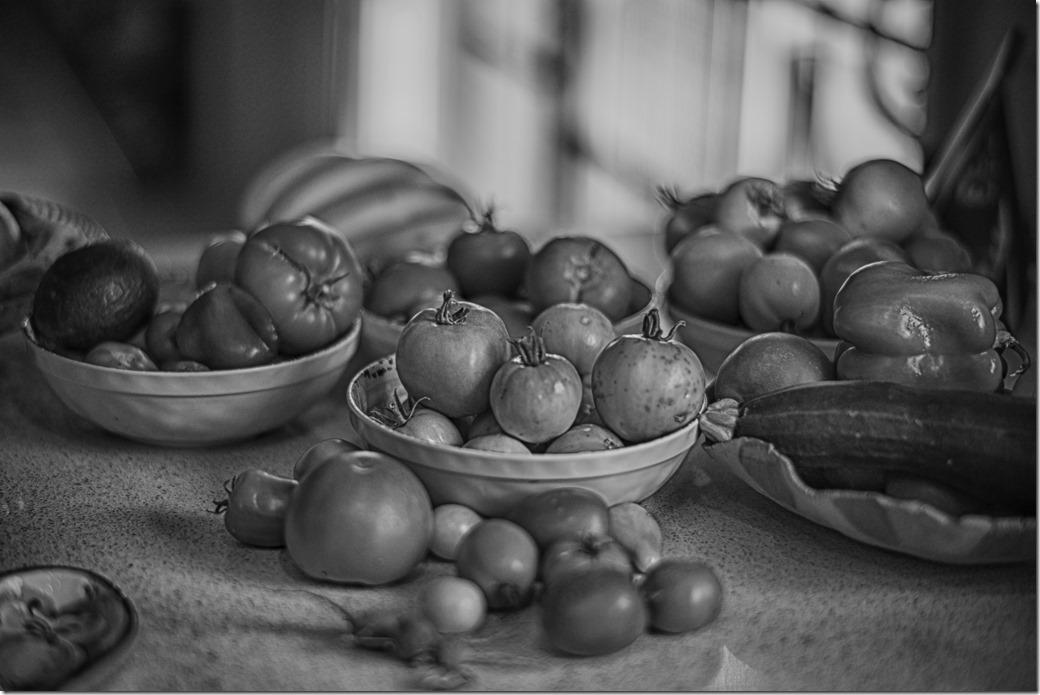 Fruit bw L1020407